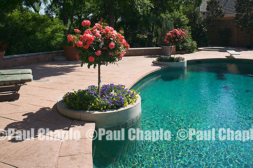 garden landscape architecture digital photographers Dallas, TX Texas Architectural Photography garden design