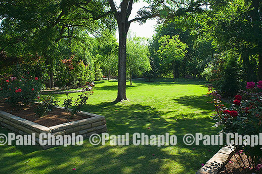 rose garden lawn  landscape architecture digital photographers Dallas, TX Texas Architectural Photography garden design