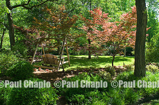 SWING FURNITURE garden landscape architecture digital photographers Dallas, TX Texas Architectural Photography garden design
