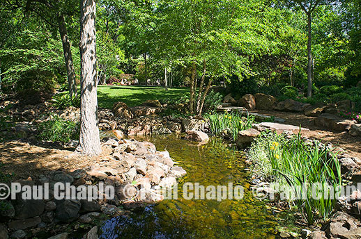 water garden landscape architecture digital photographers Dallas, TX Texas Architectural Photography garden design
