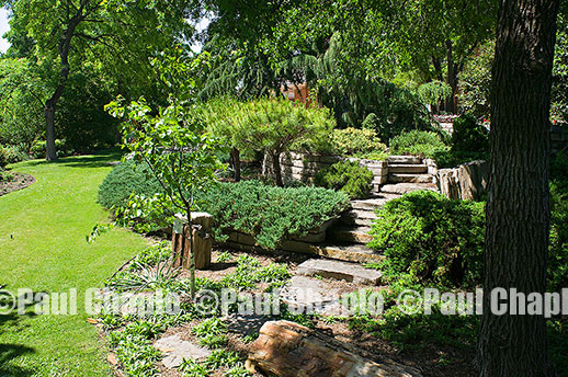 path ROCK garden landscape architecture digital photographers Dallas, TX Texas Architectural Photography garden design