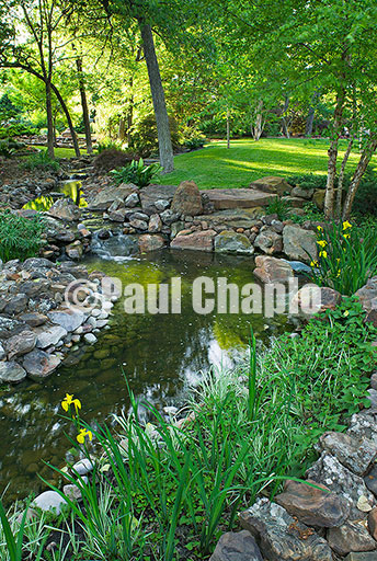 Landscape & garden photography for shelter magazine feature article